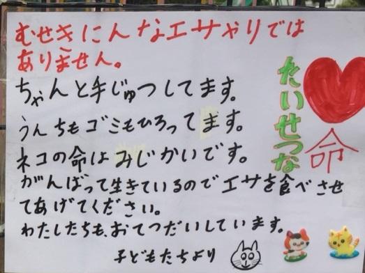 f:id:shibachomama:20190710135710j:plain