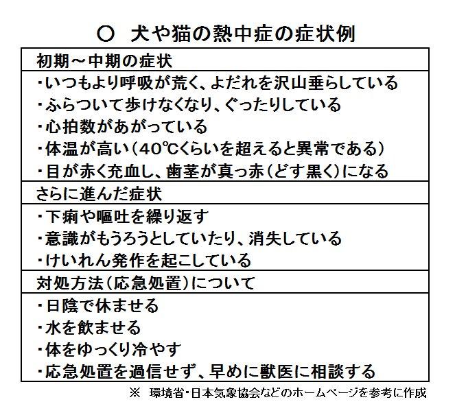 f:id:shibachomama:20190826123441j:plain