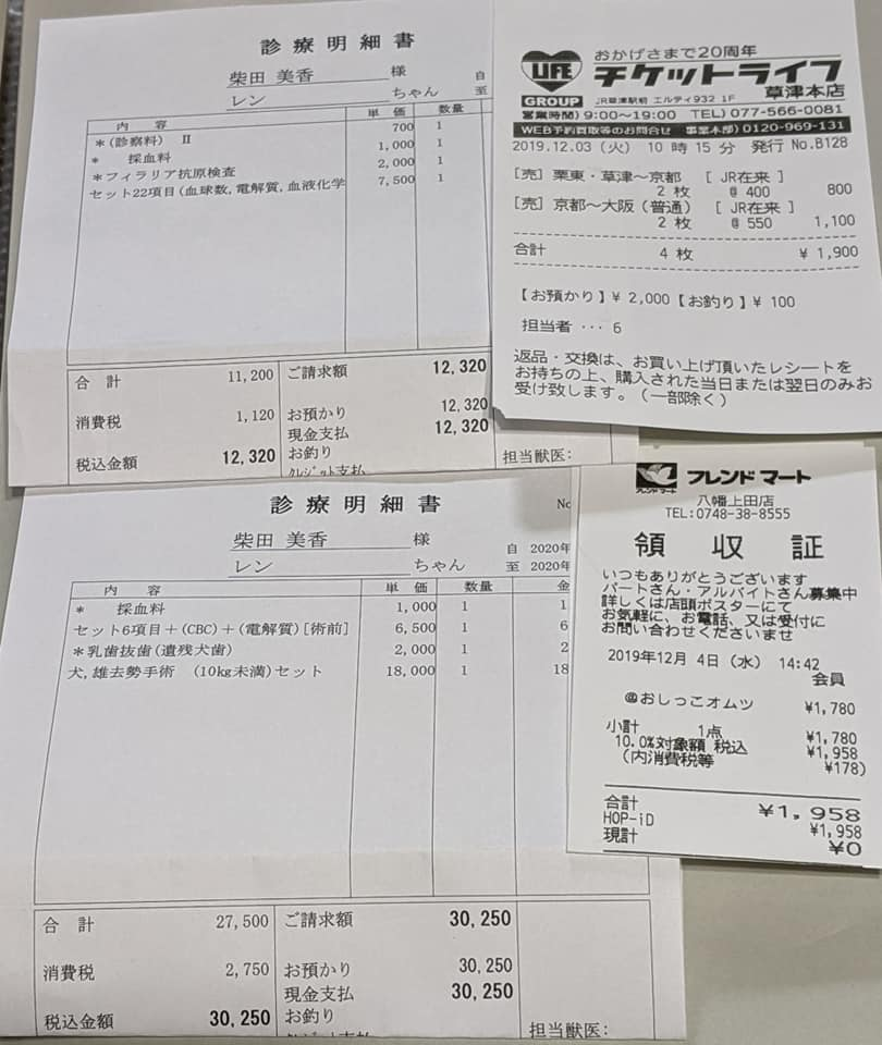 f:id:shibachomama:20200210154004j:plain