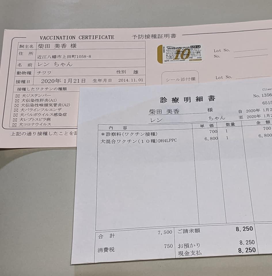 f:id:shibachomama:20200210154227j:plain