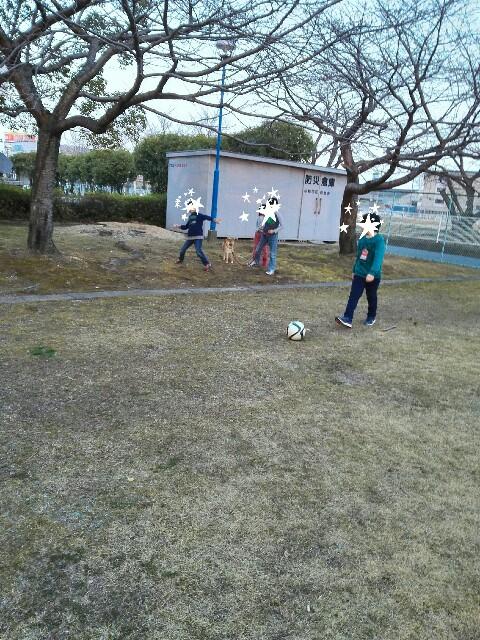 f:id:shibainumugi:20180305074822j:image