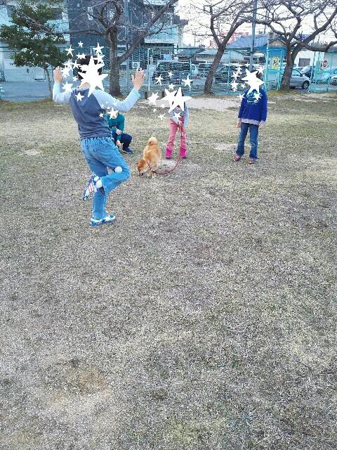 f:id:shibainumugi:20180305074853j:image
