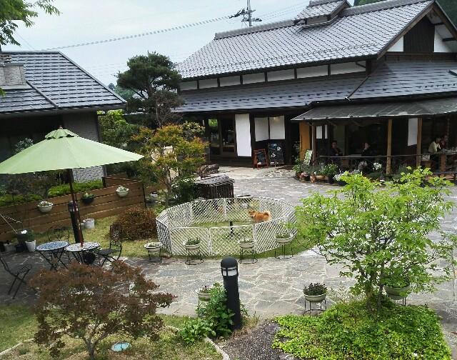 f:id:shibainumugi:20180501112727j:image