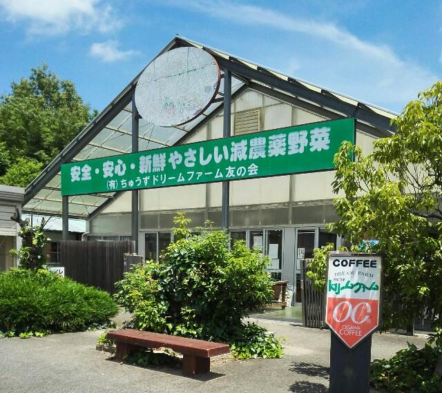 f:id:shibainumugi:20180617164249j:image
