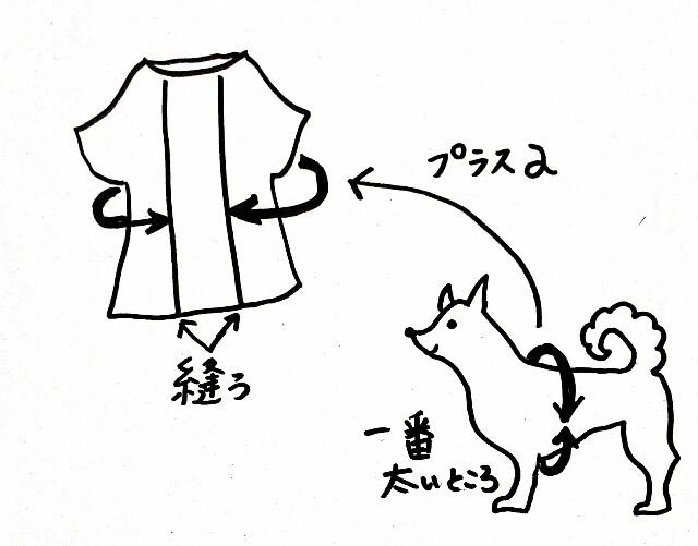 f:id:shibainumugi:20181107203322j:image