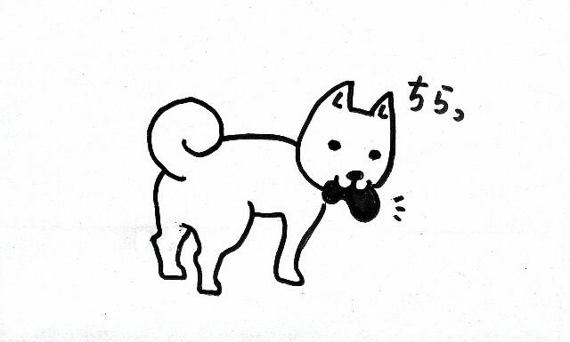f:id:shibainumugi:20181121142450j:image