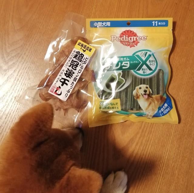 f:id:shibainumugi:20190825212241j:image