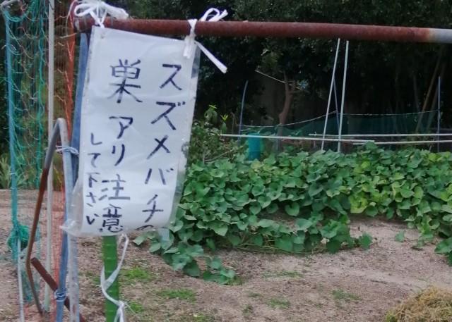 f:id:shibainumugi:20190901225848j:image