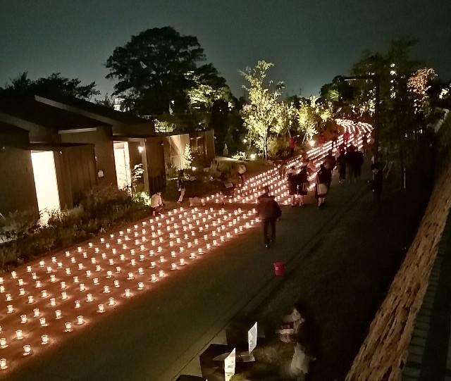 f:id:shibainumugi:20191101233947j:image
