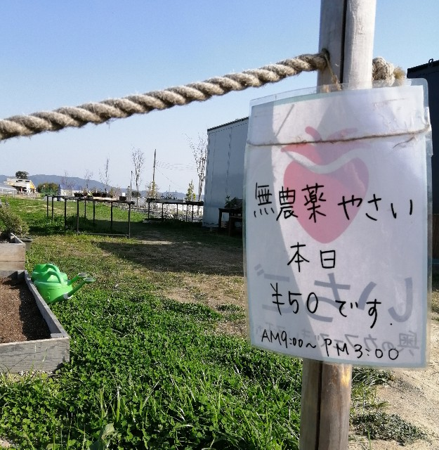 f:id:shibainumugi:20200322102010j:image