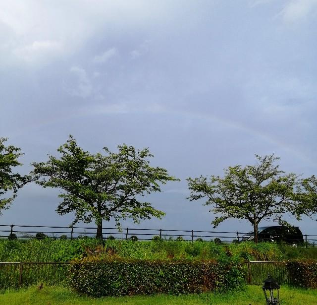 f:id:shibainumugi:20200912094636j:image