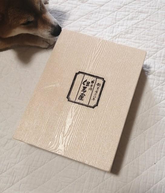 f:id:shibainumugi:20210806151435j:image