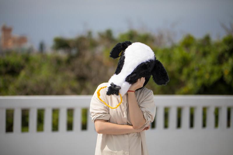 悩む牛さん