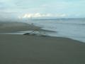 [仙台]海岸