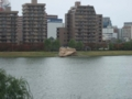 water front 在水一方
