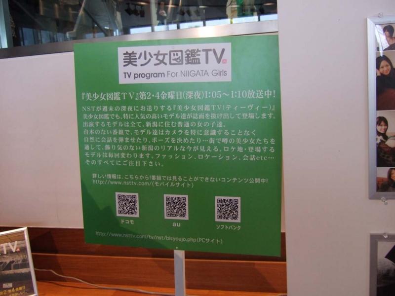 美少女図鑑TV