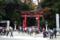 彌彦神社鳥居