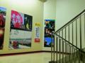 [水曜どうでしょう][HTB][onちゃん][北海道テレビ][横浜]踊り場