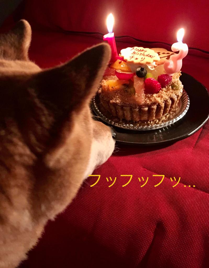 f:id:shibamasaki:20170315212206j:plain