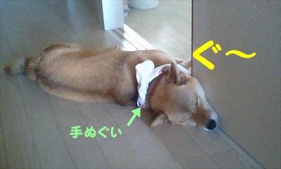 f:id:shibamasaki:20170401184850j:plain