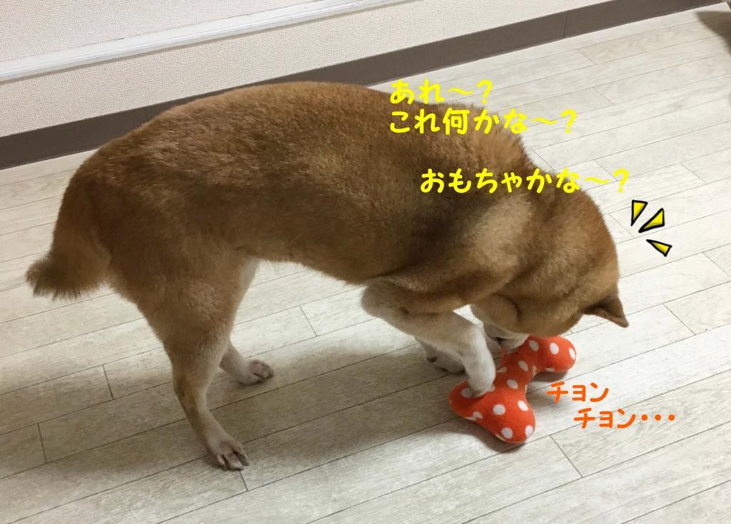 f:id:shibamasaki:20170505194125j:plain