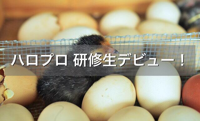 f:id:shibamasaki:20170520191653j:plain