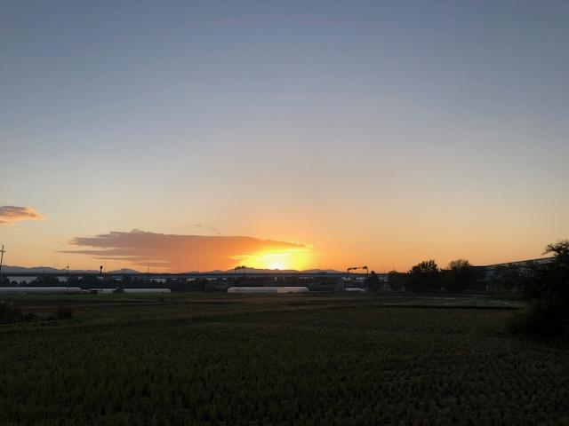 f:id:shibasaijyo:20191112063829j:plain
