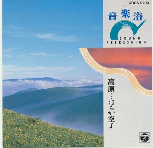 f:id:shibasakiyuji:20190316132156j:plain