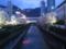生田川の夜桜