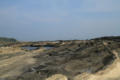 波打つ岩礁