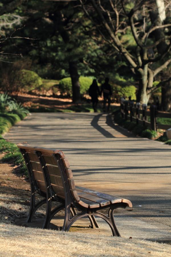 陽だまりの散歩道