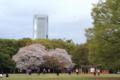 [代々木公園]春の週末