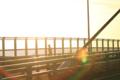 [荒川・清砂大橋]光の中のジョガー
