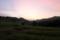 日の出を待つ棚田