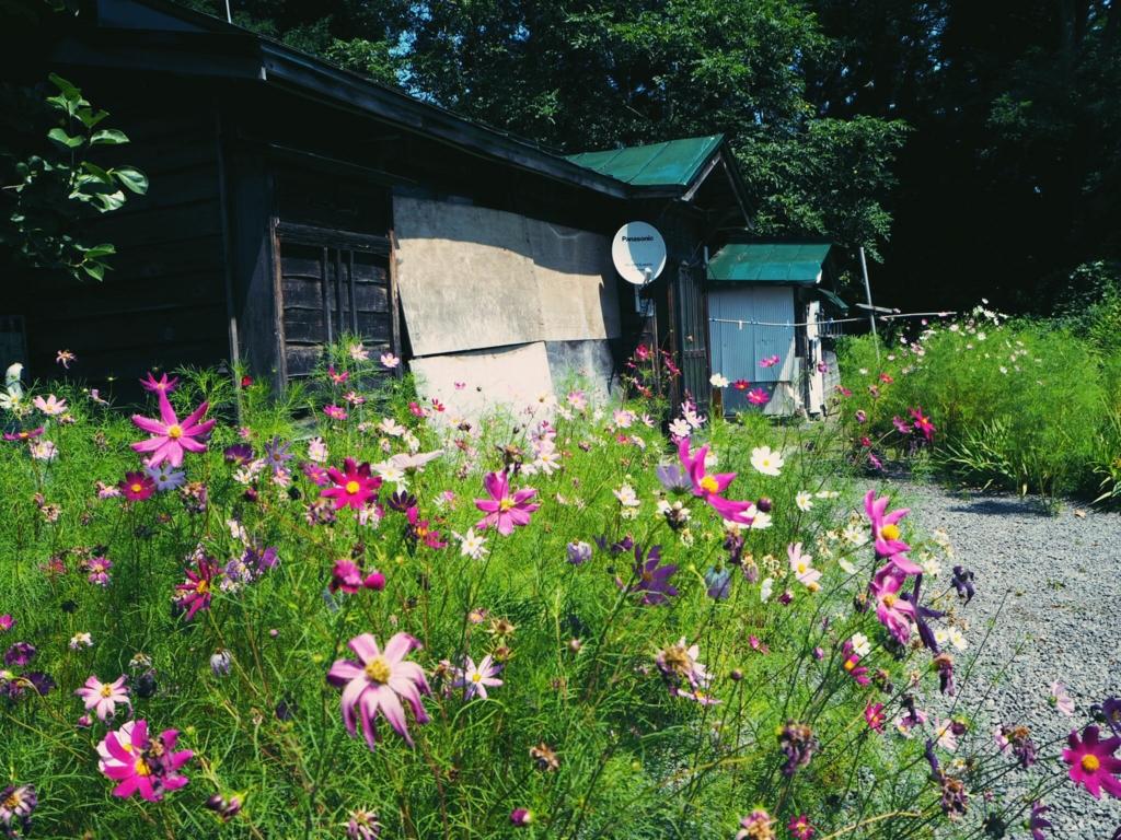 f:id:shibata-fkk0202:20161109015130j:plain