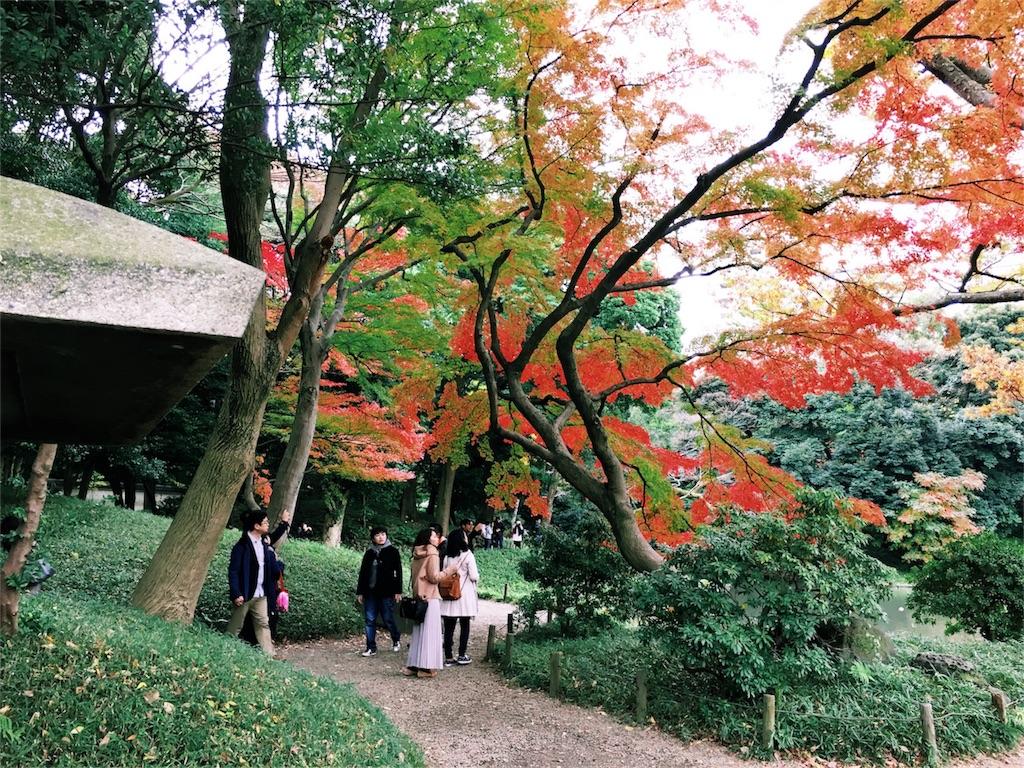 f:id:shibata-fkk0202:20161124231210j:image