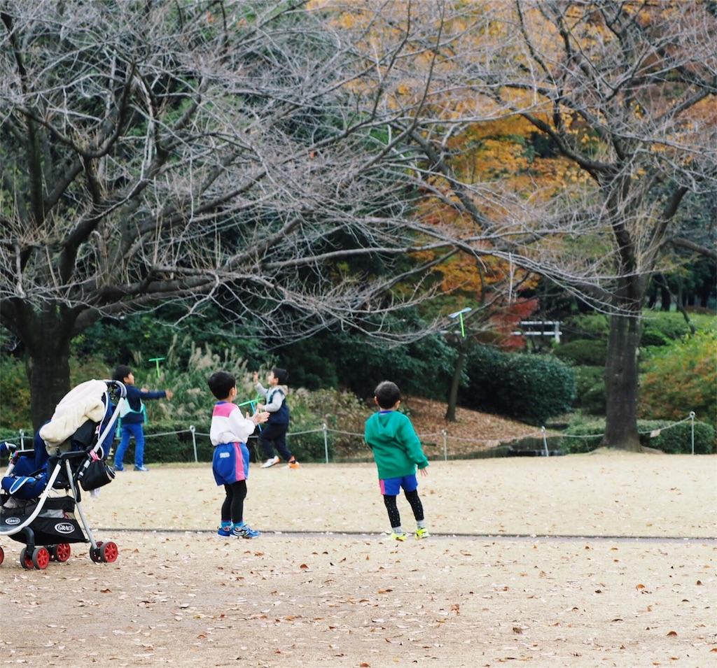f:id:shibata-fkk0202:20161201022601j:image