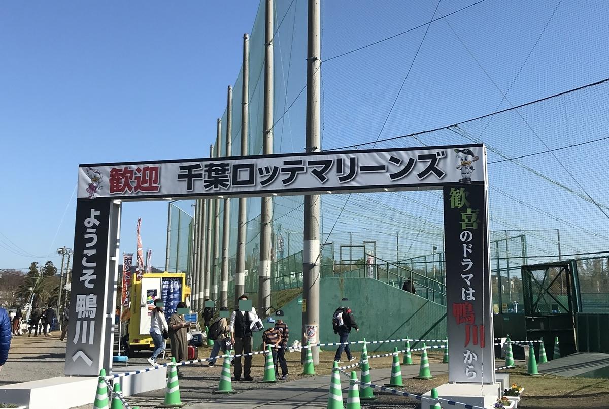 f:id:shibata_pro:20191128132418j:plain