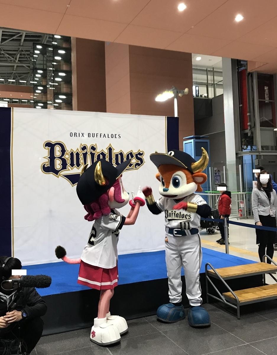 f:id:shibata_pro:20200127201712j:plain