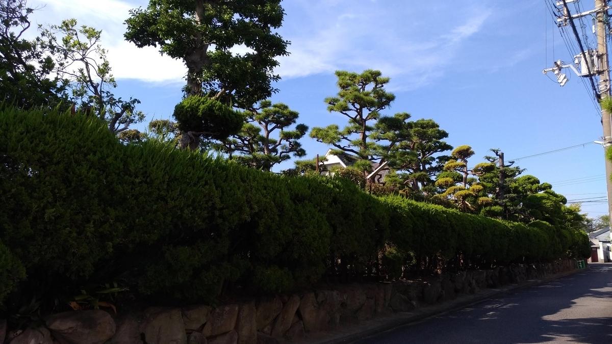 f:id:shibata_pro:20200329204049j:plain