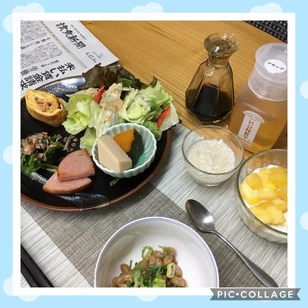 f:id:shibataku3:20190612080354j:plain
