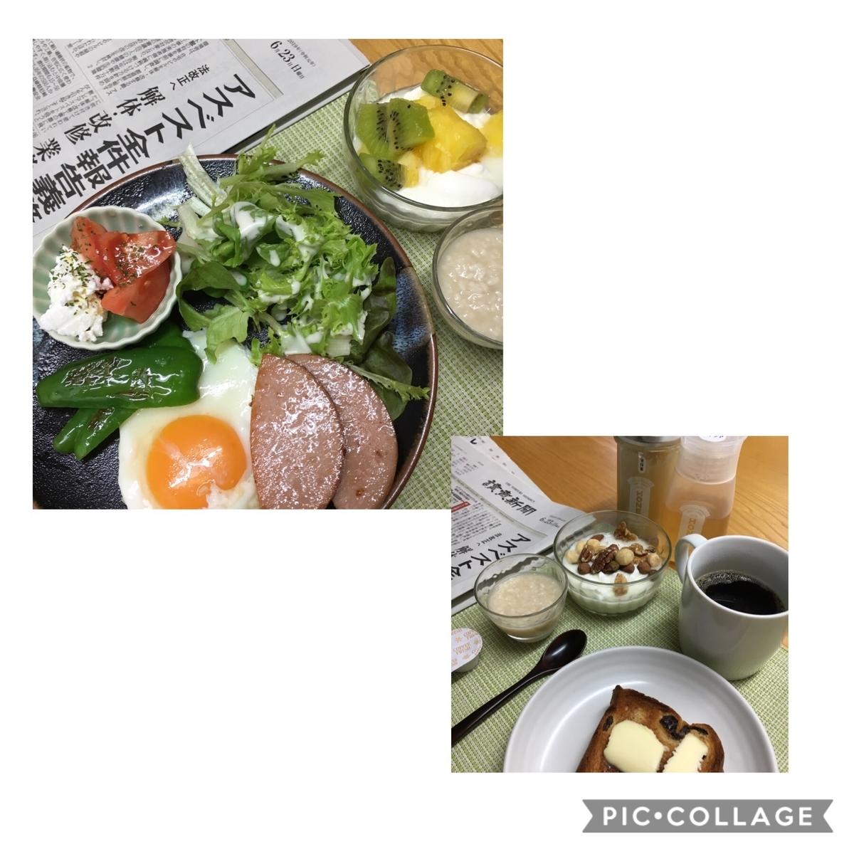 f:id:shibataku3:20190623080030j:plain