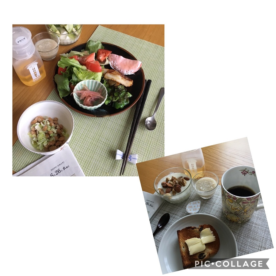 f:id:shibataku3:20190626080510j:plain