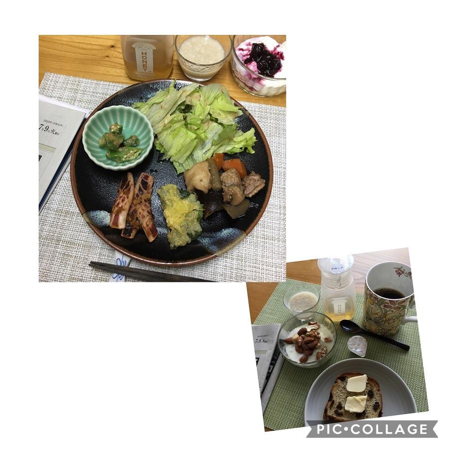 f:id:shibataku3:20190709074516j:plain