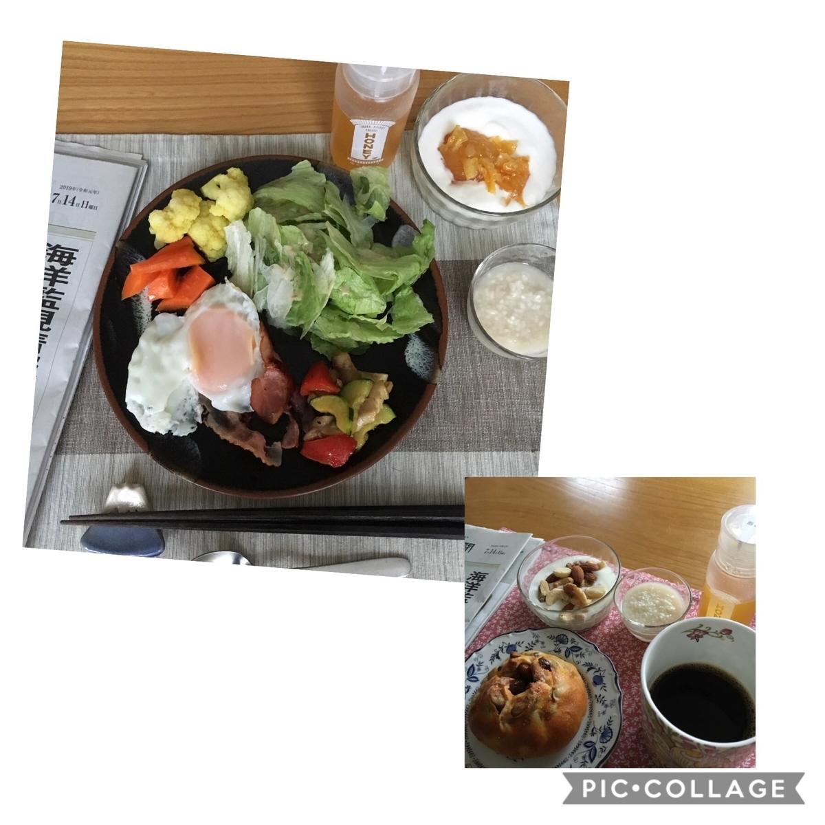 f:id:shibataku3:20190714072349j:plain