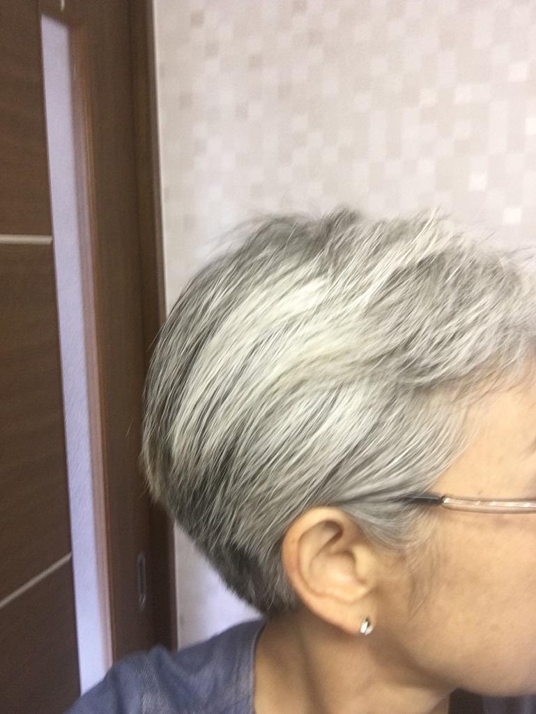 f:id:shibataku3:20190716082206j:plain