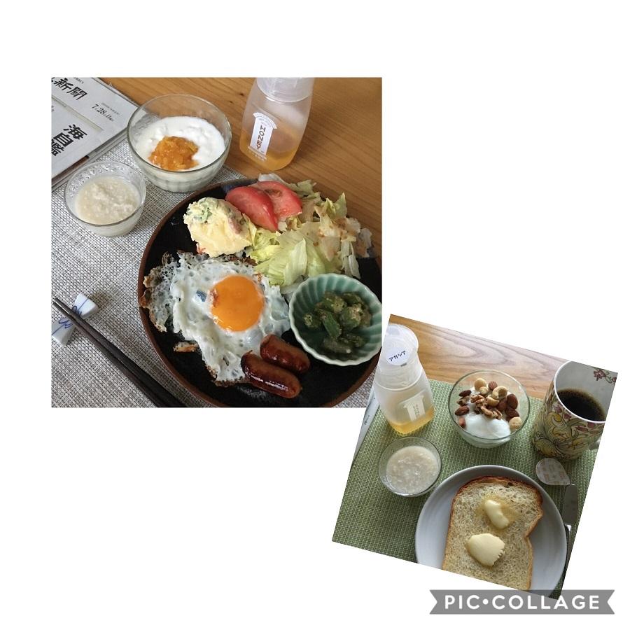 f:id:shibataku3:20190728081405j:plain