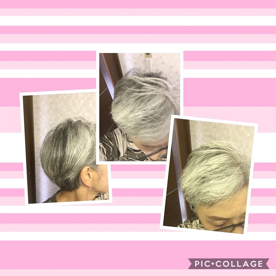 f:id:shibataku3:20190730083830j:plain