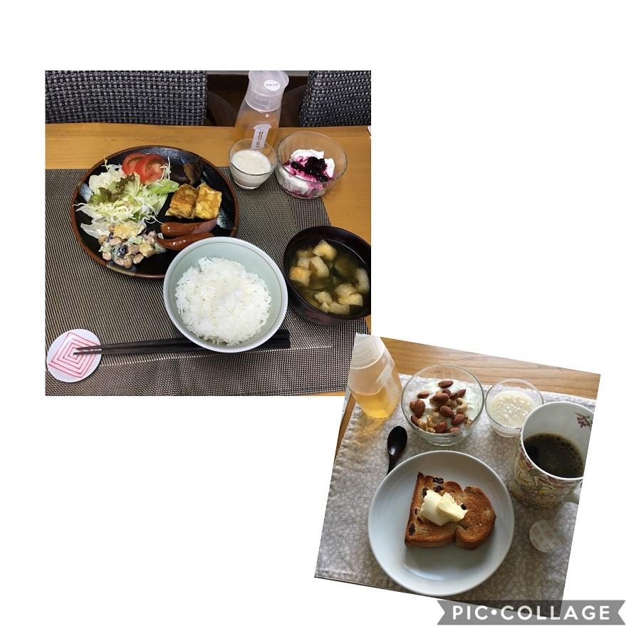 f:id:shibataku3:20190803082540j:plain