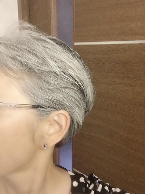 f:id:shibataku3:20190809092213j:plain